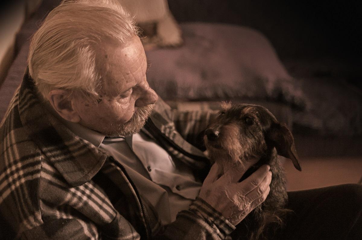 senior with pet dog