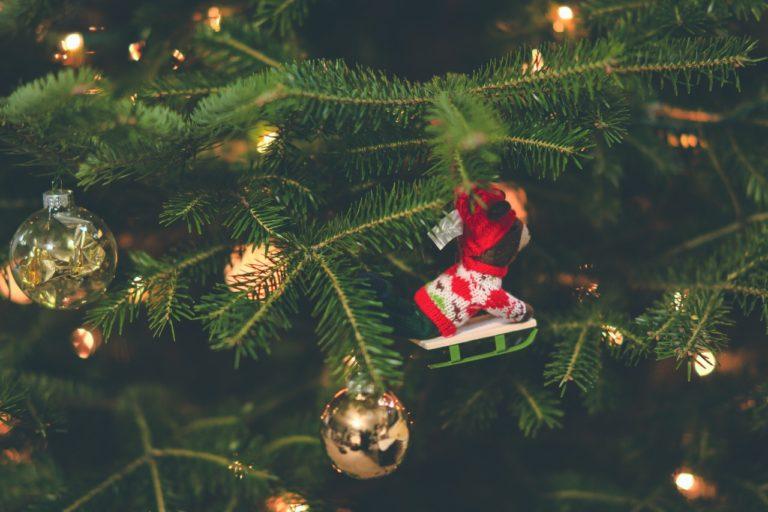 christmas ornamet on a tree